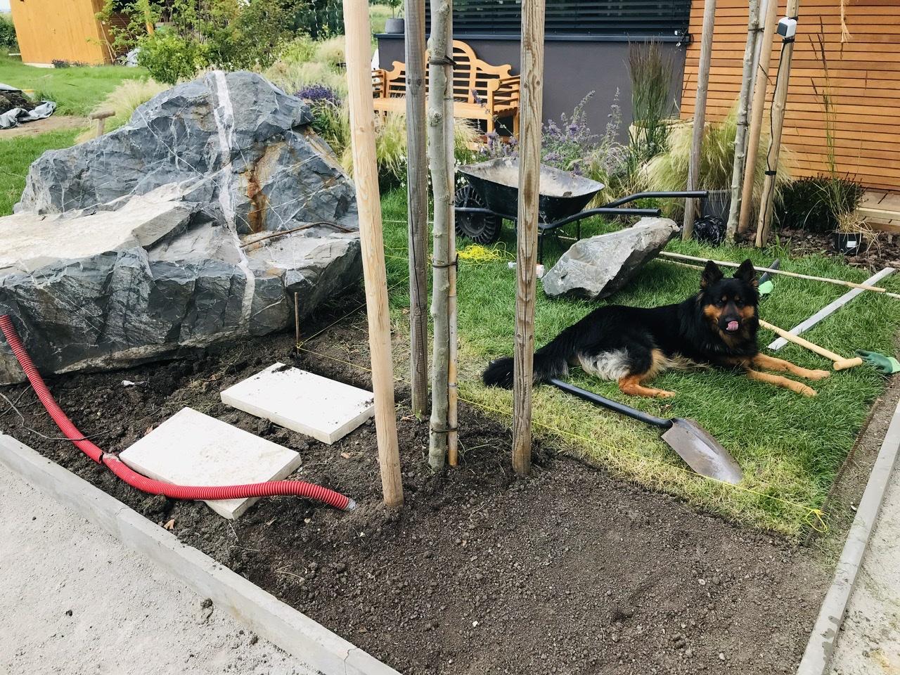 Naše L-ko - 2021 - stále dokončujeme - začínam odstraňovať travný drn okolo buduceho dreveného chodníčka u bazéna, kde príde výsadba tráv ku bazénu. Postupne rozmiestnujem nášľapy v miestach priechodu cez záhon, budu 3 priechody.