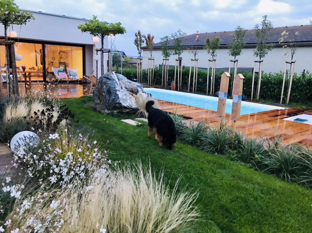 Naše L-ko - 2021 - stále dokončujeme - trvalky a trávy podvečer pri domčeku