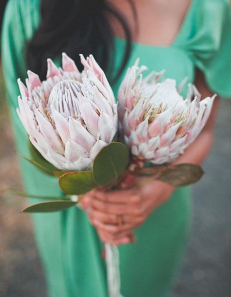 Jeden kvet :) - Obrázok č. 36