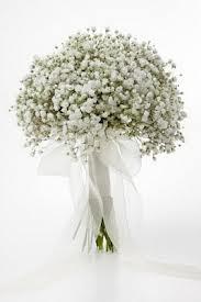 Jeden kvet :) - Obrázok č. 8