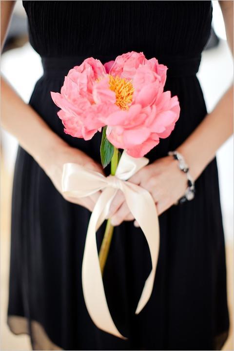 Jeden kvet :) - Obrázok č. 14