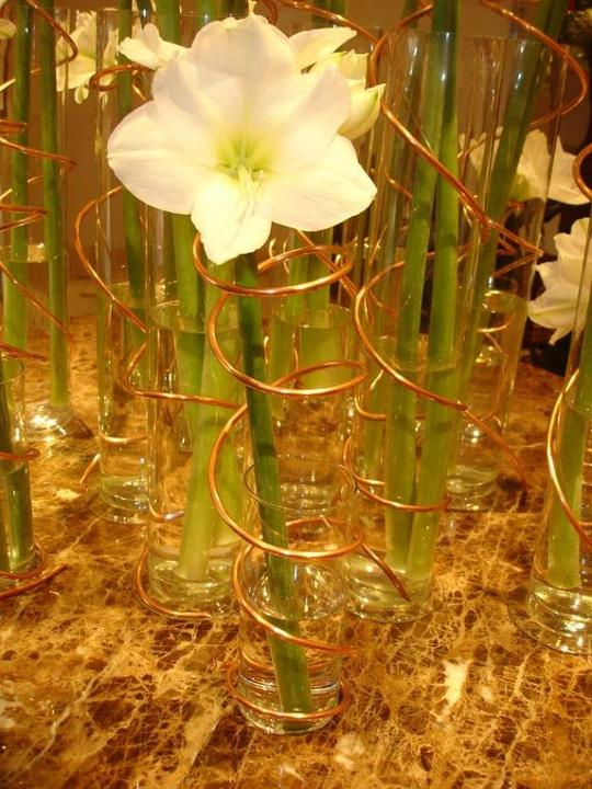 Jeden kvet :) - Obrázok č. 100