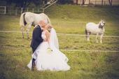 Tylové svadobné šaty, 42
