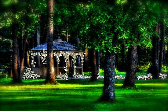 Ako vila v lese - Obrázok č. 18