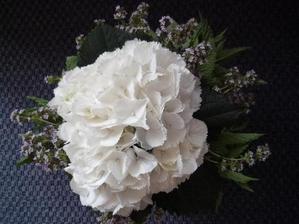 kytička uviazaná pre moju drahú maminku k narodeninám: srdce z hortenzie, tymián, meduňka a máta....