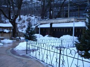 ...miesto na svadobný deň sme vyberali v zime...