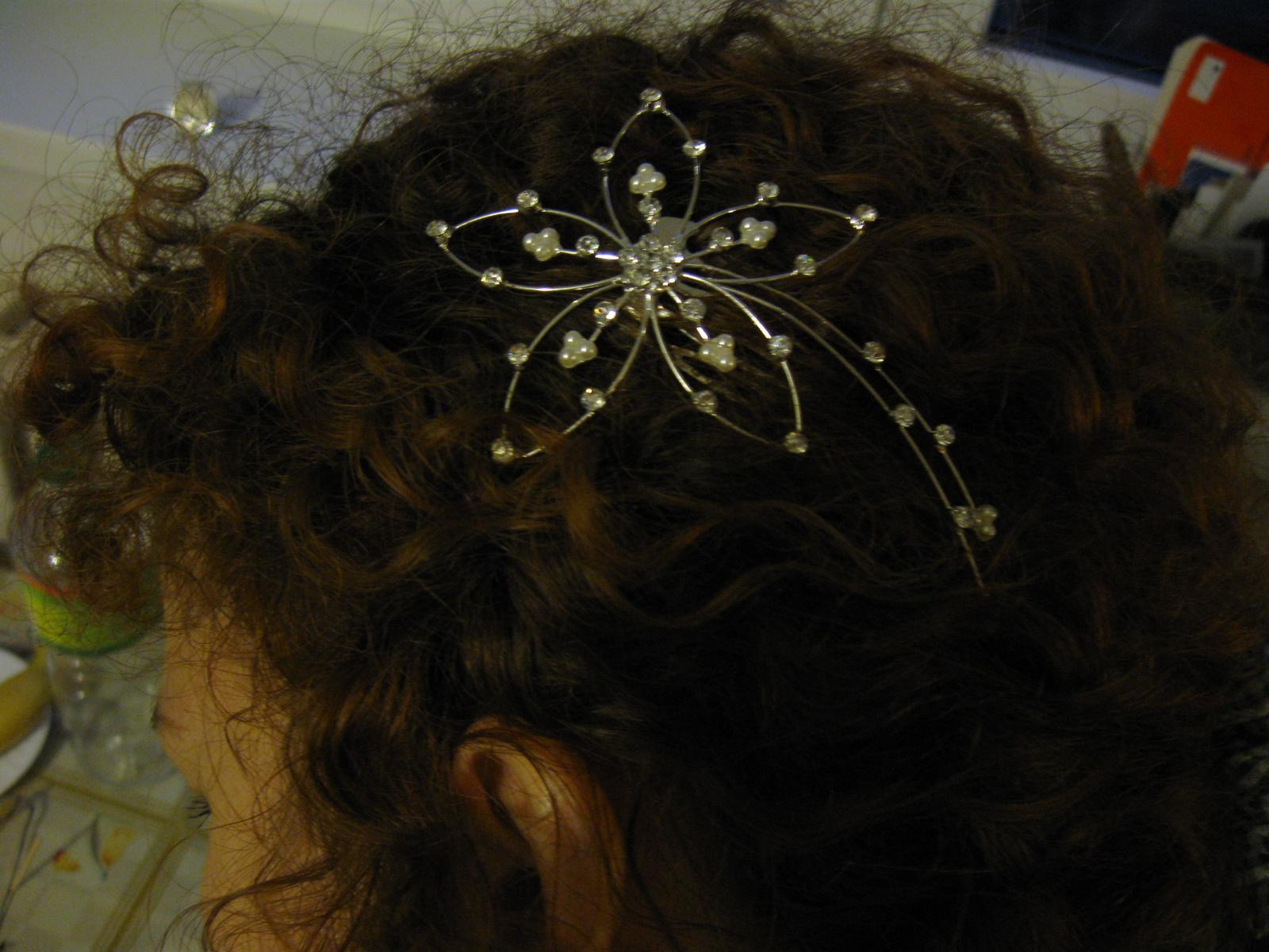 kvet hrebienok do vlasov - Obrázok č. 1