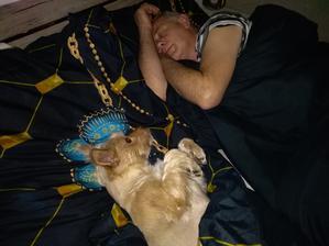 Sotva jsem opustila postel už tam leží jiná