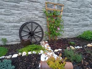 Zahrada po roce