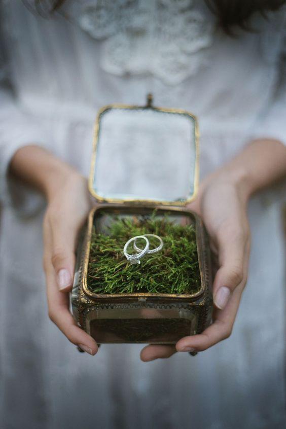 Moje vysněná přírodní svatba - Obrázek č. 2