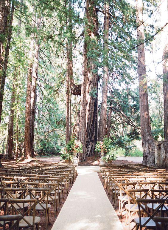 Moje vysněná přírodní svatba - Obrázek č. 9