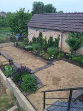 Závlahy v zemi, už len vyrovnavat a polievať nech ta zemina sadne a možno sa dočkáme aj koberca
