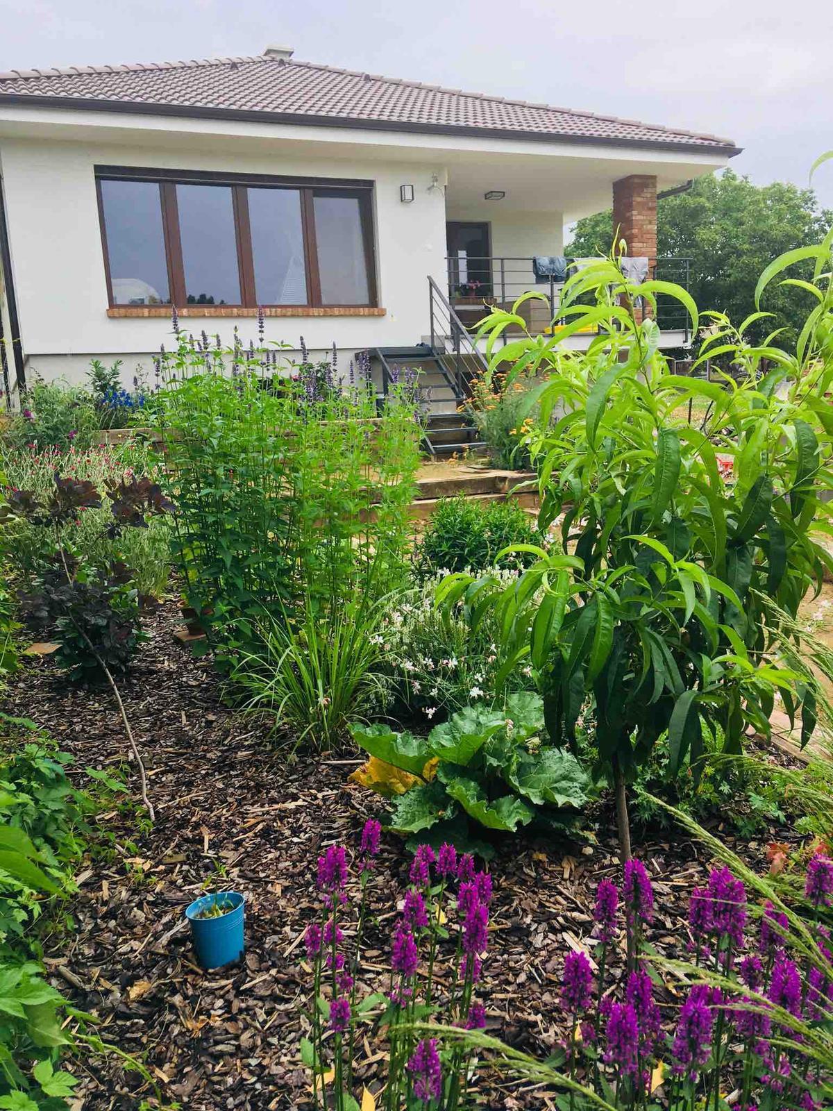 Názov stavby 3 - in da garden - Obrázok č. 55