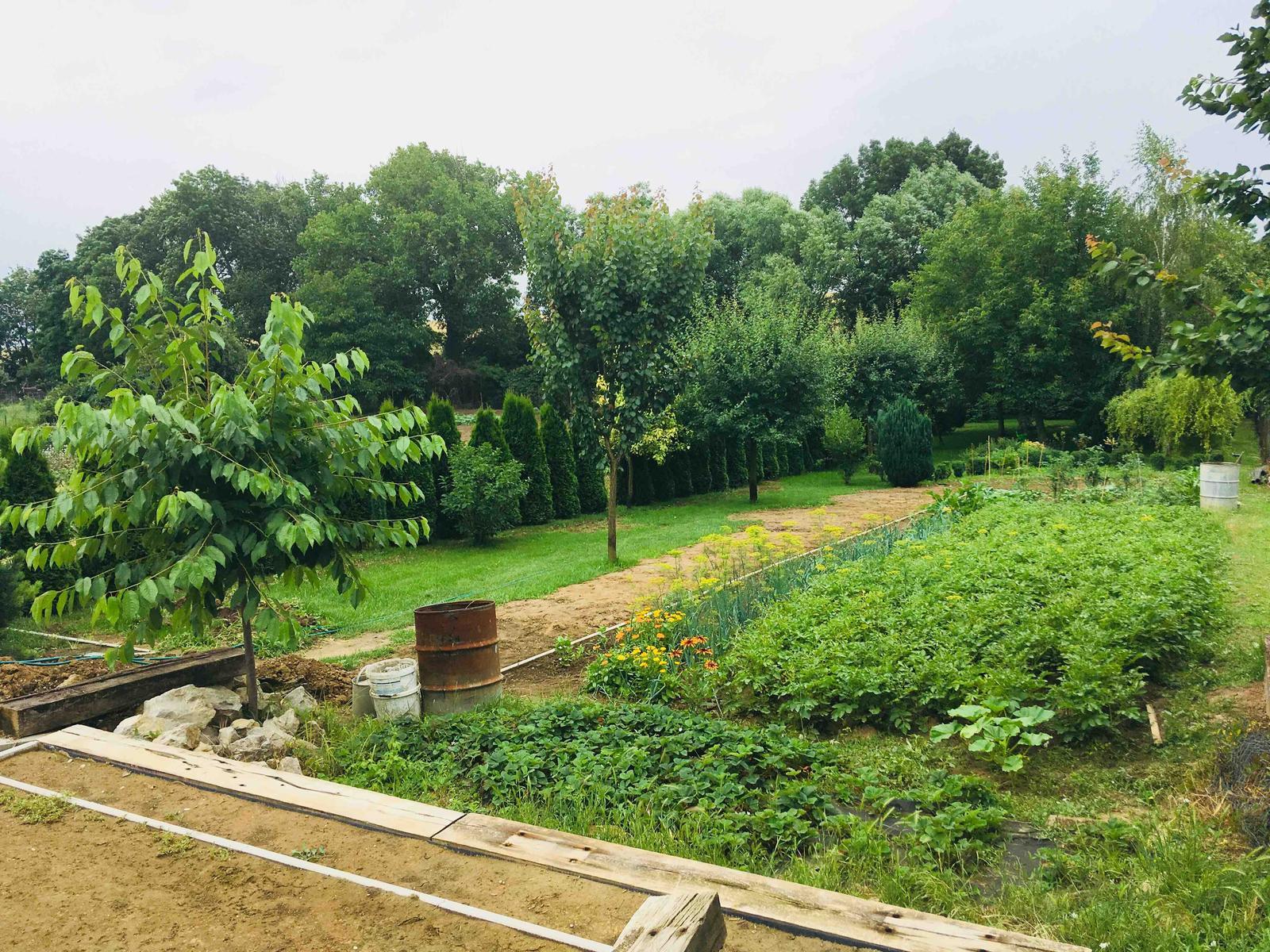 Názov stavby 3 - in da garden - moja posilka a psychoterapia