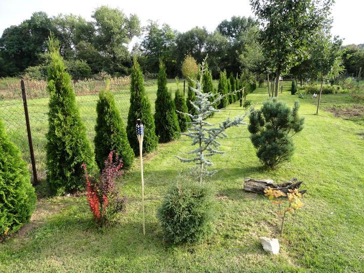 Názov stavby 3 - in da garden - leto  2014