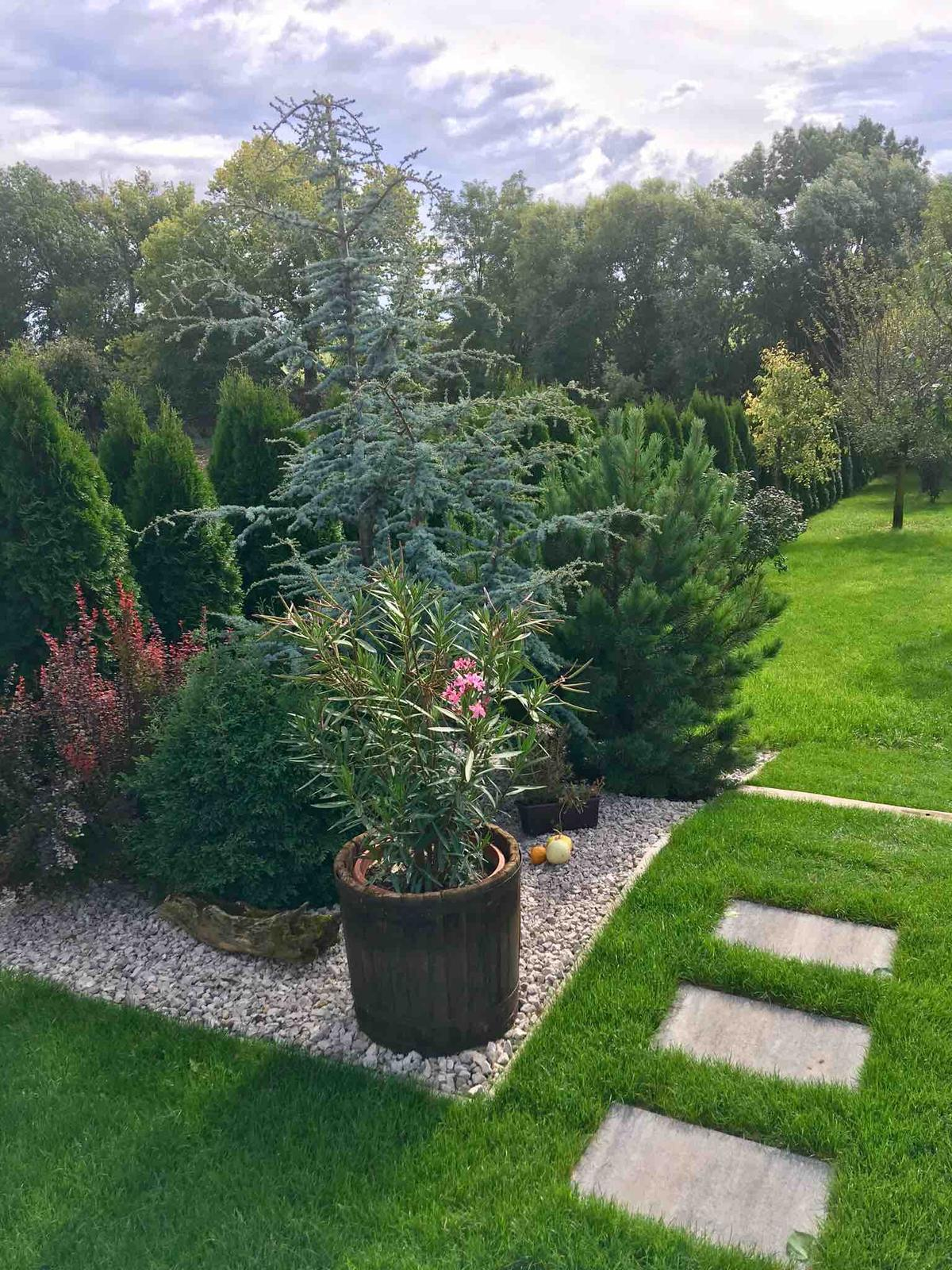 Názov stavby 3 - in da garden - september 2018