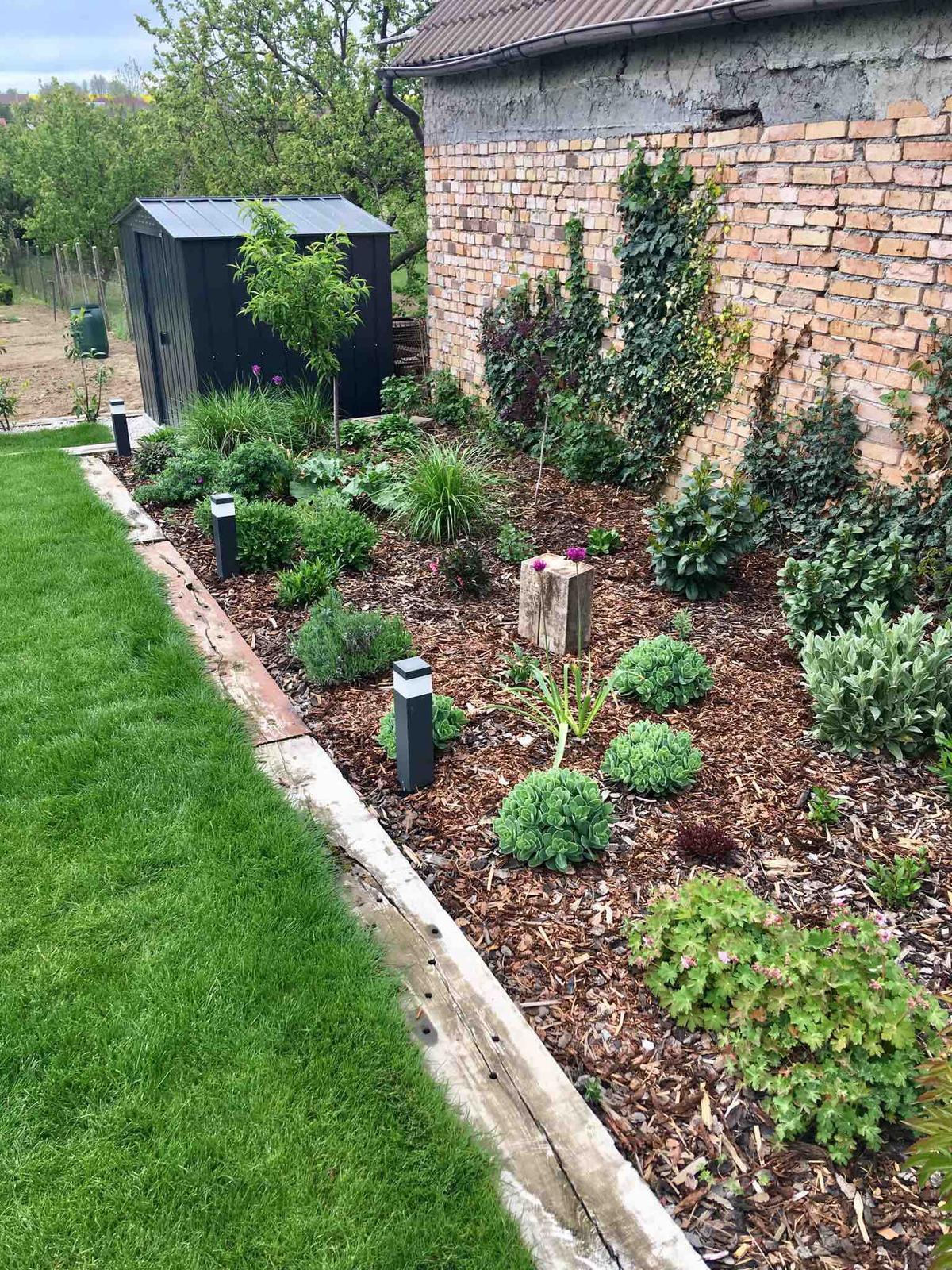 Názov stavby 3 - in da garden - ...nech už tá kôra nie je vidieť.Pakosty, gaura, floxy, šalvie, levanduľa, vajgela, agastache, astry, rebarbora, bergénia, vavrínovce, aronia, krásnoočká, lychnis, cesnaky....