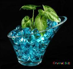 Vodní perly koupeny :)