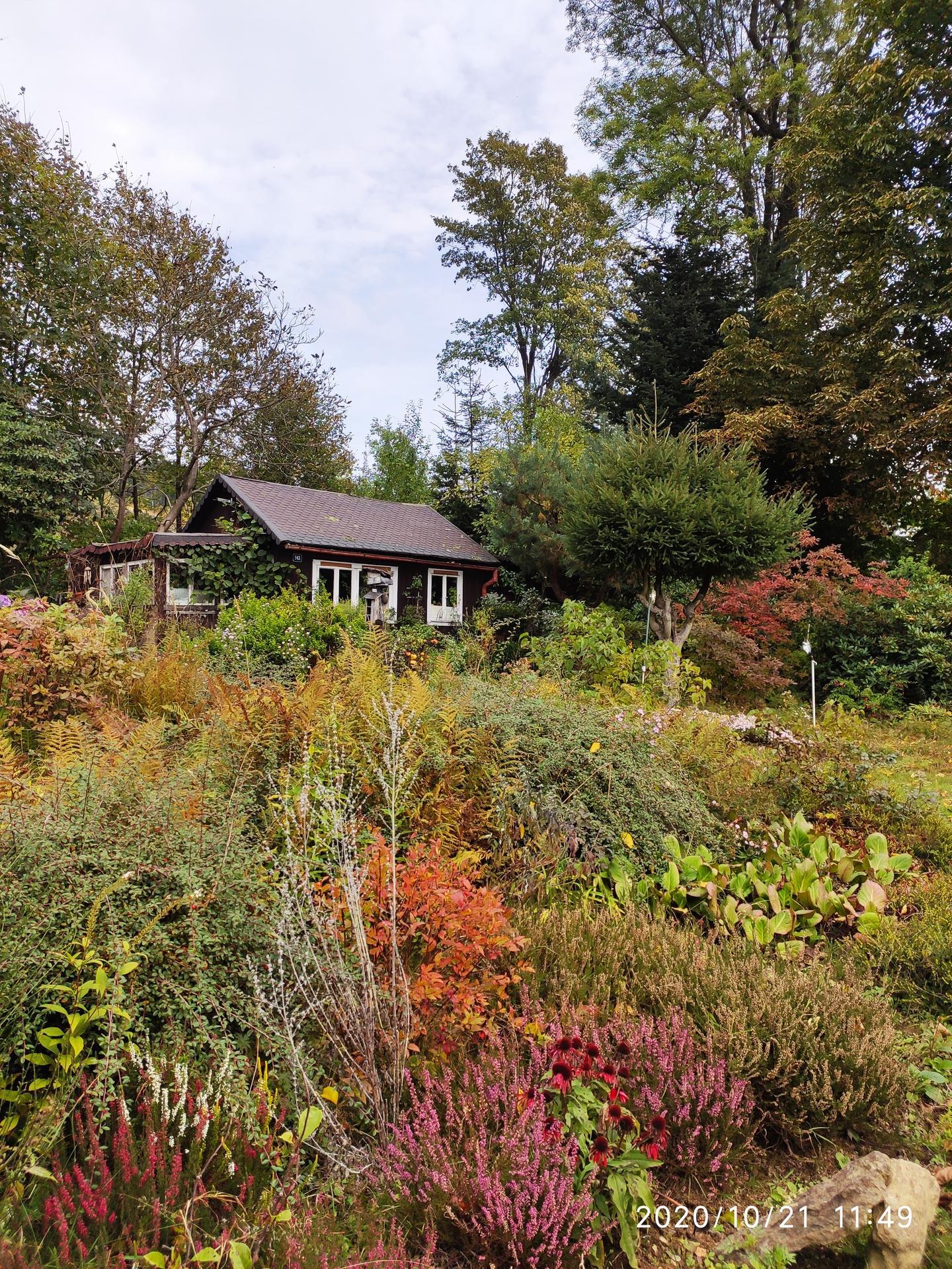 Tak a je tu podzim - Obrázek č. 3