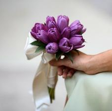 ... tulipány nee