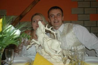 manželův vysněný svatební dar