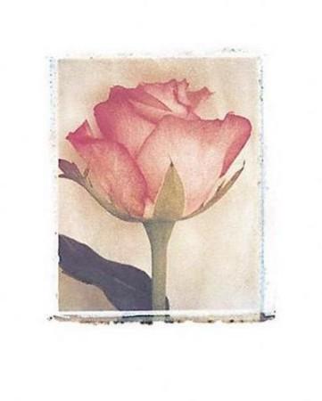 Inspirace - obrázky - nejen na oznámení - Obrázek č. 10