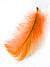 peříčka na stůl, snad budou...uf a dost oranžové:-)