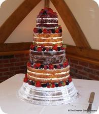 takže zatiaľ nápady na nahú tortu: - Obrázok č. 1