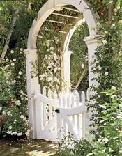 krásny  vstup  alebo prechod v záhradke