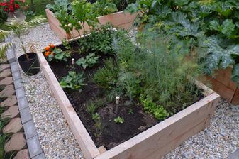 bylinkova zahrada sa tiež dobre rozkokošila :-D