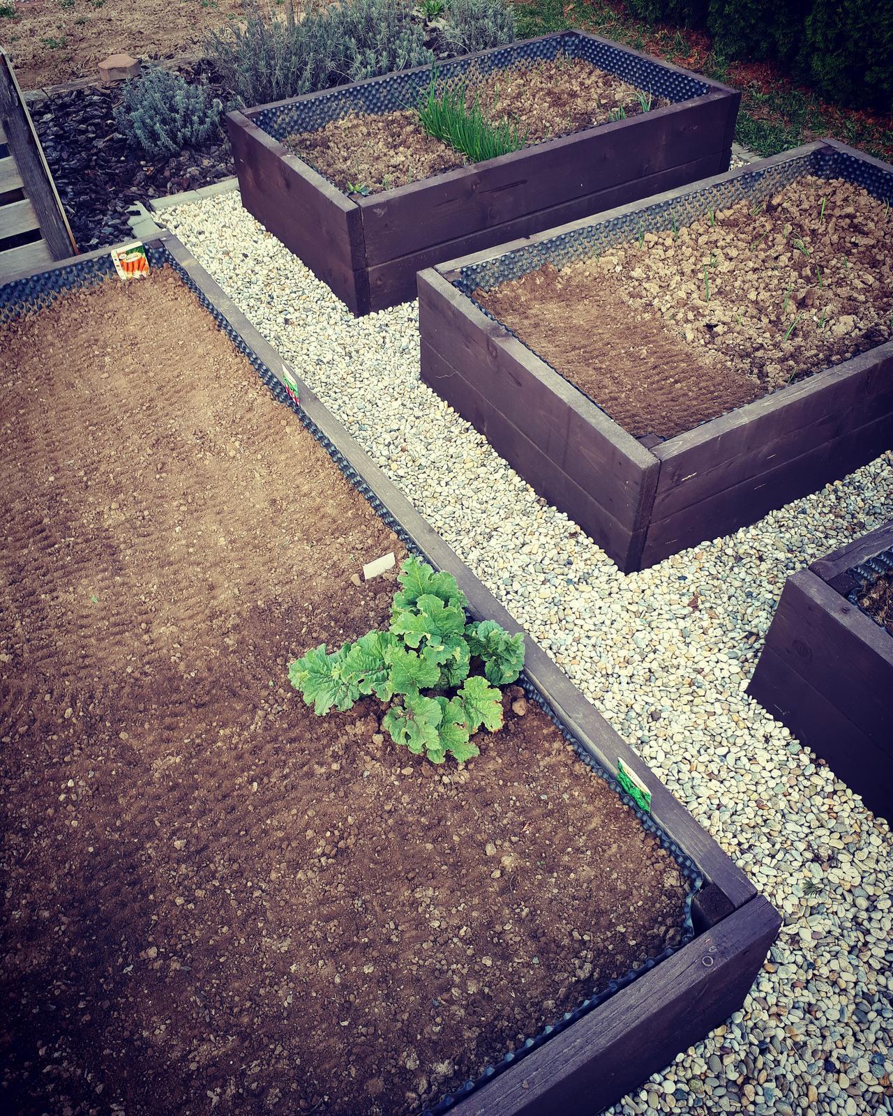 Vyvýšené záhony - podľa nás :-) - Dnes brigáda.....záhony okopané vytrhaná zelinka a nasadené semiačka reďkovky, špenátu, mrkvy a šalátu 😊😊  cibuľka už ide tiež