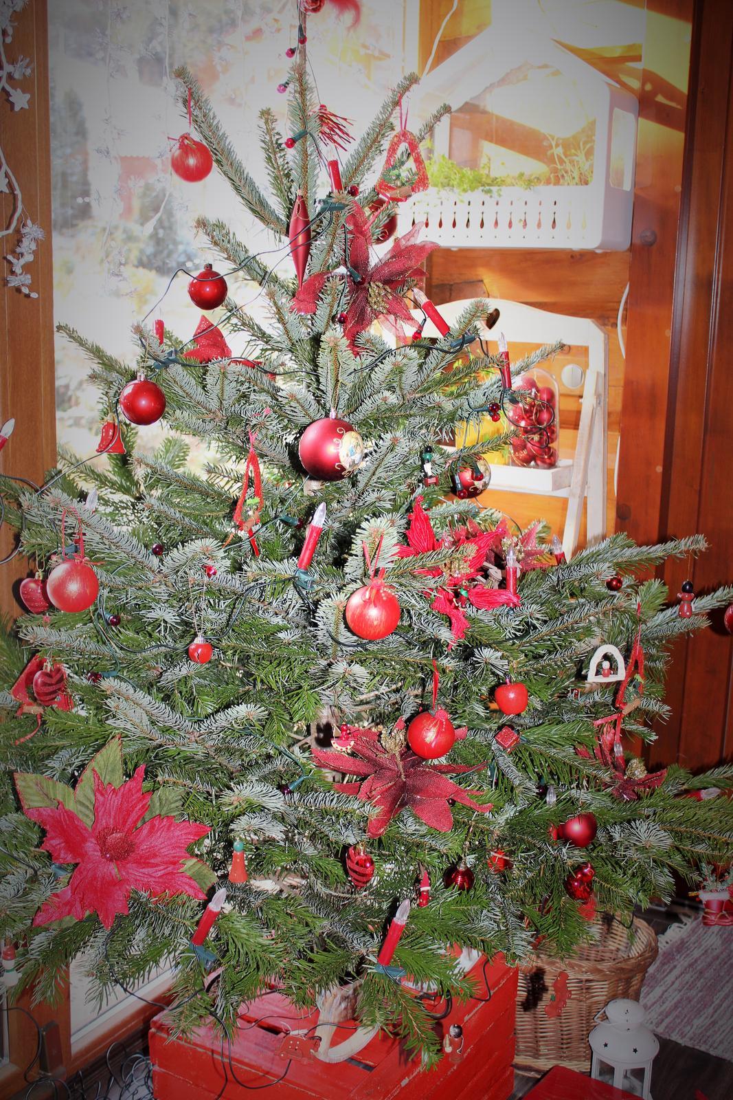 Vianoce u nás - Obrázok č. 44