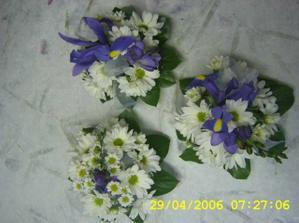 nebo místo irisů modré chryzantemy