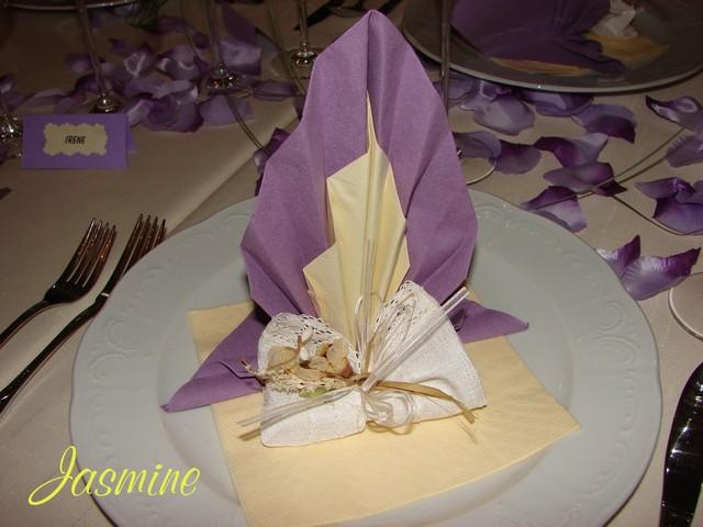 Prípravy na našu svadbu 19.09.2009 - Obrázok č. 32