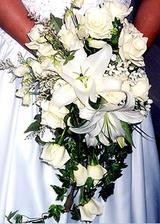 lalie su moje oblubene kvety