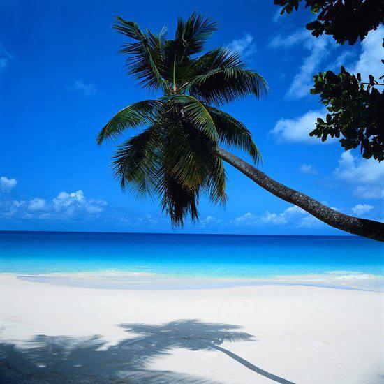 Honneymoon inšpirácie - Cancun (Mexico)