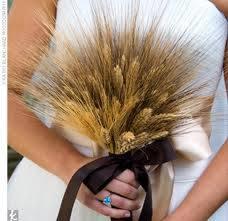 @luciakraj Svadba bude začiatkom... - Obrázok č. 4