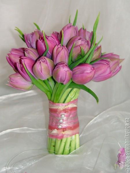 Horucka sobotnajsej noci 05.05.2007 - fialove tulipany