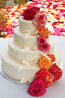 Iveta - Nasa torticka