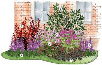 Kvetinový záhon fialový - vhodný pre otvorené slnečné miesta