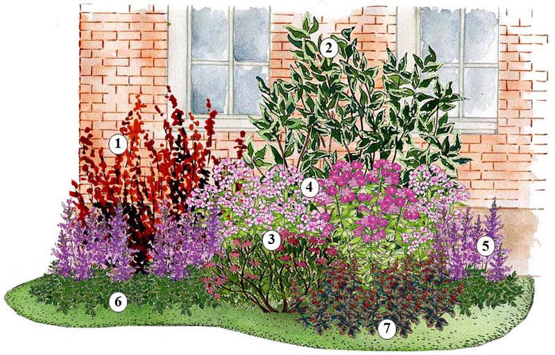 Záhony, výsadby a nejaké tie doplnky - Kvetinový záhon fialový - vhodný pre otvorené slnečné miesta