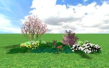 : magnolie s např. mandloní trojlaločnou Prunus triloba. Doprovodem jim jsou bílý nízký rododendron, pokryvné jehličnany, jarní cibuloviny. V létě na tomto záhoně namísto narcisů a tulipánů mohou kvést denivky