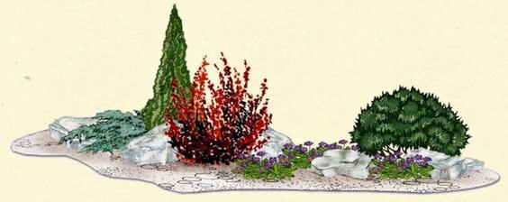 """Záhon """"Skalka s borovicou a dráčom"""" - vhodný pre otvorené slnečné miesta"""