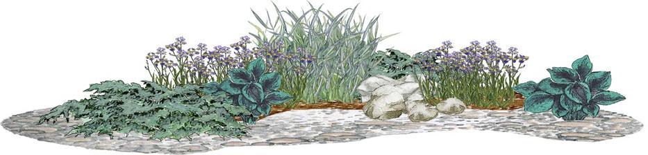 Strieborný kvetinový záhon - vhodný pre otvorené slnečné miesta