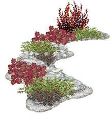 Kvetinová dráha z dráča - vhodný pre otvorené slnečné miesta