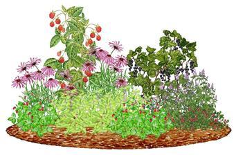"""Kvetinový záhon """"Čajový obrad"""" - vhodný pre otvorené slnečné miesta"""