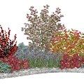 Strieborno červený kvetinový záhon - vhodný pre otvorené slnečné miesta