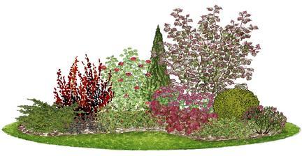 """Kvetinový záhon s lieskou """"Fuscorubra"""" - vhodný pre otvorené slnečné miesta"""