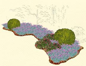 Kvetinový záhon s tavoľníkom a kličekmi - vhodný pre otvorené slnečné miesta