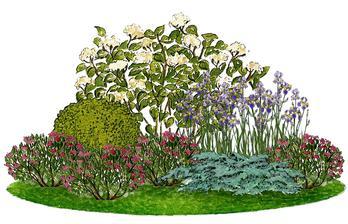 Kvetinový záhon s hortenziou - vhodný pre otvorené slnečné miesta